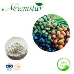 100%の純粋な自然人についてはよい25% 45%の脂肪酸が付いているノコギリパルメットのエキスを