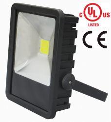 Spezielles Flut-Licht 120W