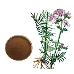 Extrait de racine de valériane de haute qualité avec 0,4 % de la poudre d'acide Prix Valerianic