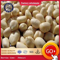 2020 Getreide-neuer roher geblichener Erdnuss-Kern