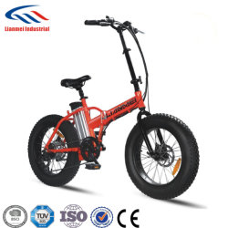 "20"" 250w Fat Tire Electric Bicycle 6-Speed Beach Snow E-Bike 36v10ah Lithium Batterij"