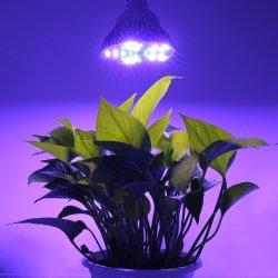 PAR38 en todo el espectro de luz LED de crecimiento de plantas para jardín interior