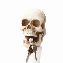 PolyresinのクラフトのHalloweenの頭骨のキーのホールダー