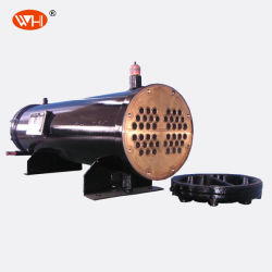 Tubo più freddo del titanio di acquicoltura dello scambiatore di calore del acciaio al carbonio dell'evaporatore dell'acqua di mare