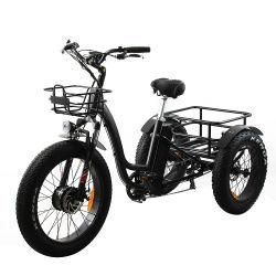 Unidade de 24 polegadas dianteiro 48V 500W 750W 3 grande roda de carga dos pneus de gordura triciclo Eléctrico Bike Mz-384
