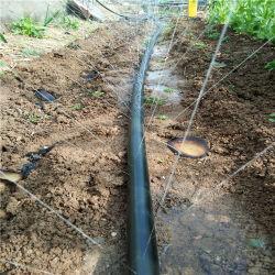 PE - Bandes Micro Spray Irrigation au goutte à goutte