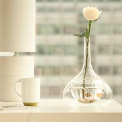 Diseño de producto pecera de vidrio