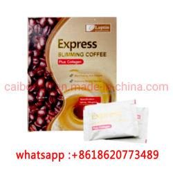 Nova chegada a leptina Emagrecimento Produtos de perda de peso de café
