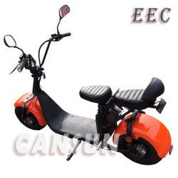 18inch de elektrische Brushless Vette Autoped van de Band EEC/Coc