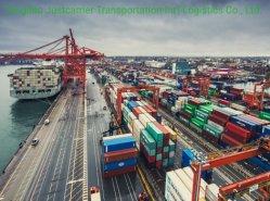 Mejores resultados profesionales más barato Ocean Freight Forwarder Envíos a Canadá el puerto