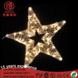 LED-Weihnachtsstern-Motiv-Dekoration-Licht