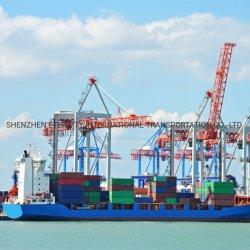 중국에서 위키타시/저지 시티/주노/칼라마/켄달빌/케노샤/케치칸/케나이/녹스빌/코디악까지 해양 운송 포와딩 에이전트입니다