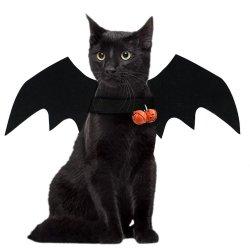 La mode chat chien Costumes bat des ailes aile artificielle dress up ornement Halloween Cosplay fournitures de produits pour animaux de compagnie Quick-Release parti