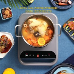 apparecchio per la cottura dei cibi di disegno del fornello unico di induzione/strumentazione elettrici 2000W della cucina con il CE ALP-DC22H-1 dei CB