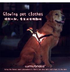 A luz de LED Linli até o Chicote do Cão Gato Colete Ajustável Chicotes brilhante em Fibra Óptica Roupas Pet, 7 cores de luz