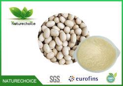 Het natuurlijke Witte Uittreksel van de Boon van de Nier voor het Verlies van het Gewicht