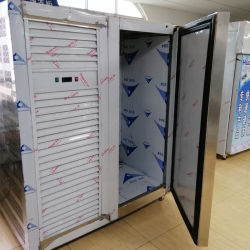商業冷却装置単一のドア-40度のフリーザーの国内縦の版のフリーザー