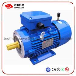 Yej Y2ej serie Freno Electromagnético Motor asíncrono trifásico