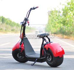 1000W, 800W 500W, système de frein à disque Li-Battery Harley Scooter électrique