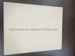 Natural Ash And Beech Plywood Professional Furniture Plywood Manufacturer