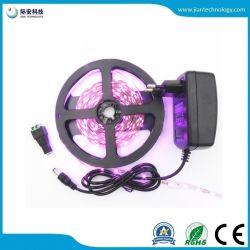 3528 60LED/M 12V IP65 weißer LED flexibler Streifen