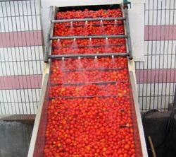 Position basse de racleur en acier inoxydable pour les fruits et légumes de l'élévateur