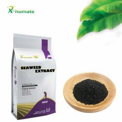 100% natural solúvel em água Biostimulant extracto de algas marinhas de Ascophyllum Nodosum