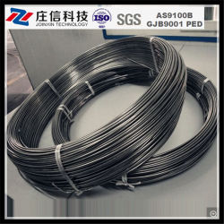 Haute qualité Grade 2 0,25mm ASTM B863 sur le fil de titane de pêche de soudage