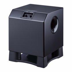 Мощный домашний кинотеатр 12-дюймовый низкочастотный громкоговоритель динамики в корпусе черного и белого цвета