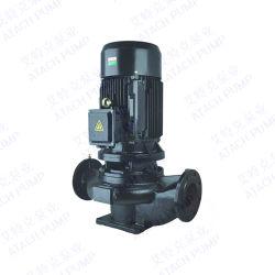 Pompa ad acqua verticale della conduttura della singola fase Gd50-40 per le fontane del giardino