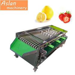 Frucht-Gemüse-Sorter-Kartoffel-kleine Tomate-ordnender Produktionszweig olivgrüner Grad-sortierende Maschinen-Preis