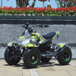 49cc off road Kids Mini Quad ATV (et-atvquad-24)