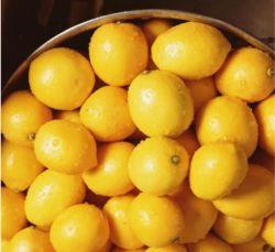 Комплекс Acidifier высокого качества с молочная кислота лимонная кислота