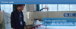 Auditoria de processo/Profissional do serviço de inspecção na China