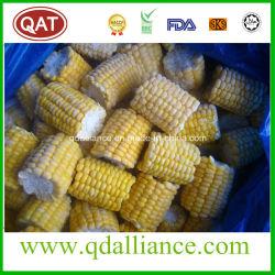 Замороженный IQF Super Sweet отрезать куски початков кукурузы