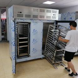 Refrigeratore dritto di scoppio dei surgelatori del gelato/Governo congelatore ad aria compressa