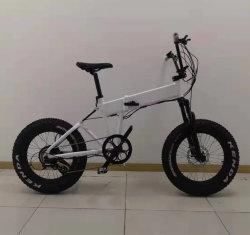Neuer voller Aufhebung-Form-fetter Reifen-kleiner Falz-elektrisches Fahrrad-Fahrrad Ebike