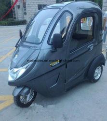 Un'automobile elettrica delle tre rotelle con l'alta qualità 60V