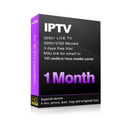 Gli S.U.A. Canada IPTV vivono film di VOD e della TV con i canali filippini indiani caraibici di Latina del comitato del rivenditore