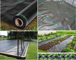 Commerce de gros géotextile tissé en PP noir mat de contrôle des mauvaises herbes