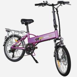 Commerce de gros 350W de montagne de pliage vélo électrique