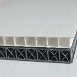 주름을 잡거나 중국제 플루트를 불 빈 Twinwall/Coroplast/Corflute PP/Plastic 장