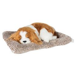 Nuevo juguete de perros de la decoración del hogar del perro de carbón activado coche muñecas Decoración creativa vivo perfecto perro de simulación