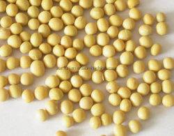 Suministro de fábrica de la Salud Alimentaria Extracto de Soja con 60% de las isoflavonas (bean)