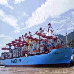 Морские грузовые перевозки из Китая в Чили Сан Висенте