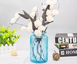 Frasco de vidrio de vidrio/jar// Jarrón de la decoración del hogar