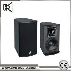 Sistema de karaoke de altavoces de sonido de 10 pulgadas de Audio Profesional de la RCV