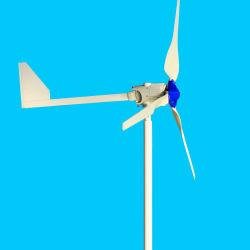 Heißer Verkauf kleine Leistung 1kw 48V Windturbinengenerator