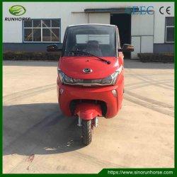 Chinese 25km/H 120 Lader van de Auto van de Afstand in mijlen de Elektrische