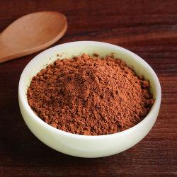 Utiliser la poudre de cacao naturel chocolat ensemble de la vente